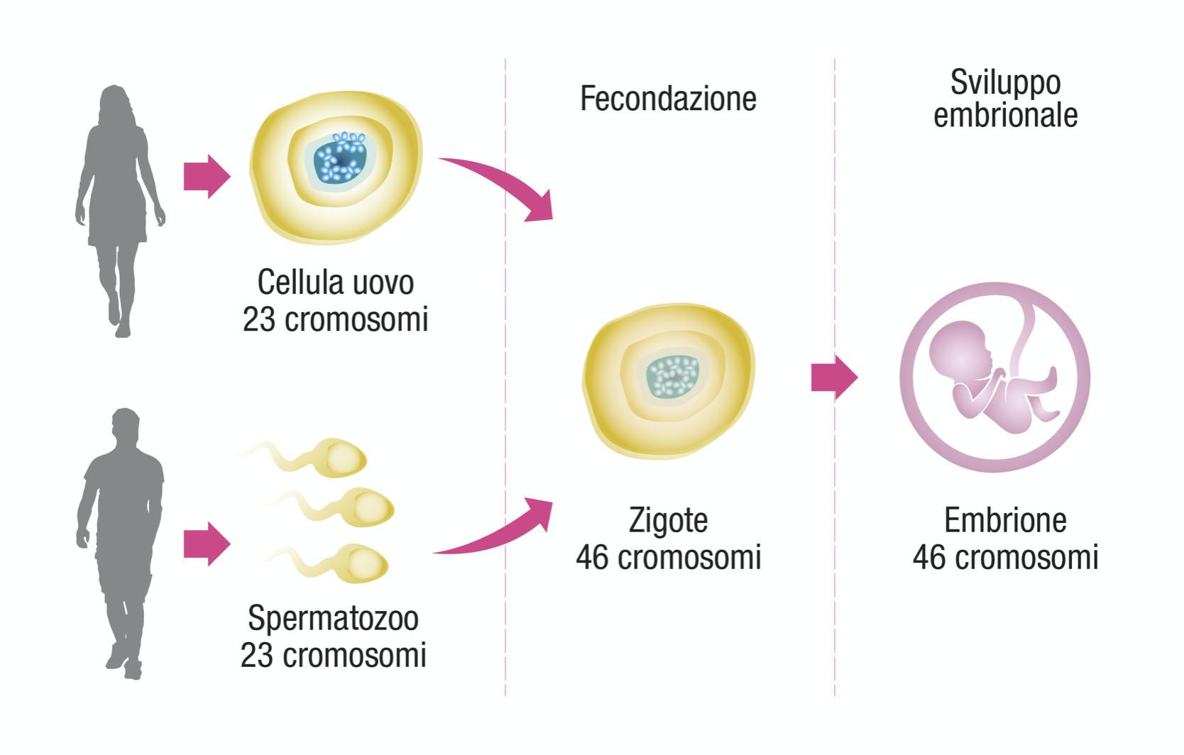 Donna in gravidanza Blog Aki Italia foto6